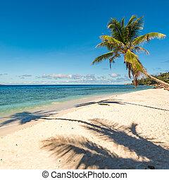 トロピカル, 完全, 島, バックグラウンド。, 休暇, 浜。
