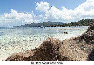 トロピカル, 島, 砂, セイシェル, 浜