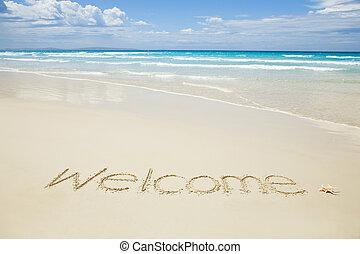トロピカル, 書かれた, 歓迎, 浜