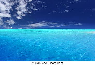 トロピカル, 礁湖