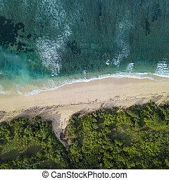 トロピカル, 航空写真, 浜, 光景