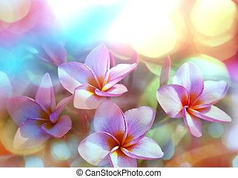 トロピカル, 花