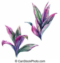トロピカル, 葉, ベクトル, セット