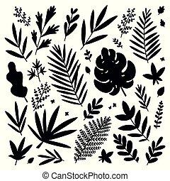 トロピカル, 葉, 黒, シルエット, ベクトル, セット