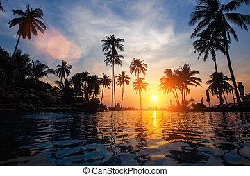トロピカル, 驚かせること, 浜。, 日没, 海
