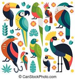 トロピカル, 鳥