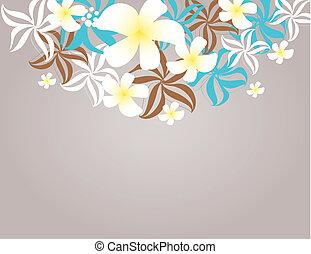 トロピカル, frangipani, 花, (plumeria)