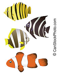 トロピカル, stripy, 魚