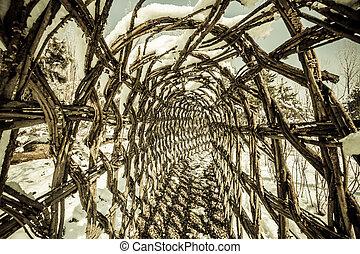 トンネル, 歩くこと, によって, ツル