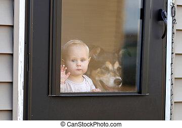 ドア, ペット, 窓, 犬, 見る, 待つこと, 赤ん坊, から
