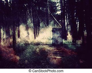 ドア, 中に, ∥, 森林