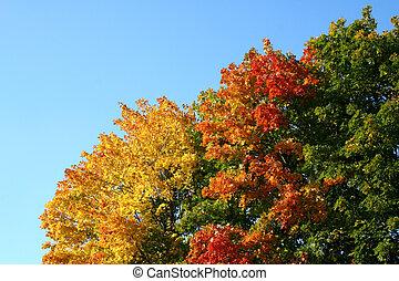ドイツ, 秋