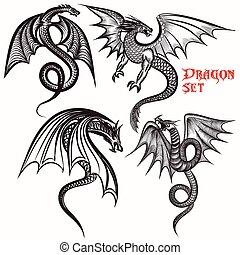 ドラゴン, コレクション, デザイン, 入れ墨, 手, 引かれる