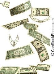 ドル, 白, 隔離された, 背景, 秋