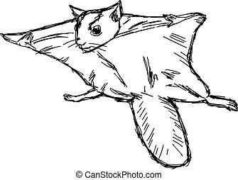 ドロー, リス, 飛行, pteromyini, イラスト, 隔離された, バックグラウンド。, ベクトル, petauristini, doodles, 白, 手, ∥あるいは∥