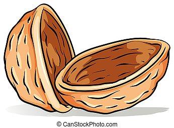 ナッツの殻