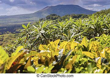 ニカラグア, 火山, 国立公園, masaya