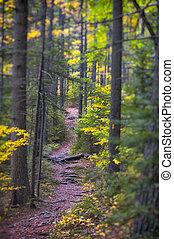 ニューイングランド, 秋