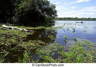 ネイティブ, 湖, アマゾン, 漁師, 風景, マージン