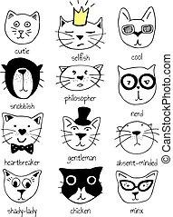 ネコ, セット, 特徴
