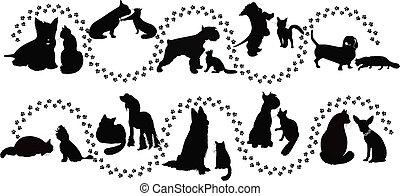 ネコ, 動物, 犬