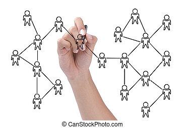 ネットワーク, 上に, 隔離された, 背景, 社会, 白, 案