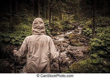 ハイカー, ハイキング, ポーランド人, 川, mouton, 森林, 見る, 小さい