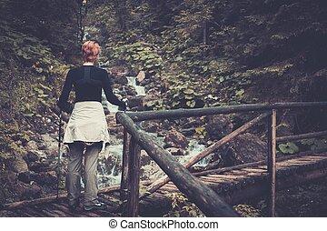 ハイカー, 歩くこと, 木製である, ハイキング, ポーランド人, 上に, 橋, 森林