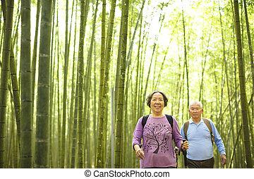 ハイキング偶力, 緑の森林, シニア, 竹