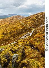 ハイキング, 国立公園, 道, によって, connemara