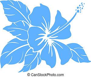 ハイビスカス, シルエット, flower.
