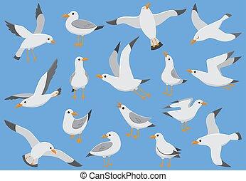 ハエ, 鳥, かもめ, sky., quay., カモメ, イラスト, ベクトル, 大西洋, 海, 白, 海鳥, 浜, 漫画
