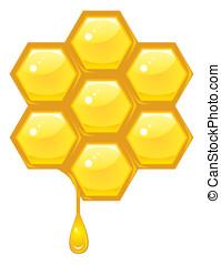 ハチの巣, ベクトル