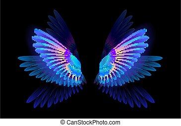 ハチドリ, 翼, 白熱