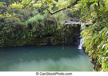 ハワイ, rainforest, 滝, maui