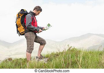 ハンサム, バックパック, 坂の上へ, 読書, 地図, ハイカー, ハイキング