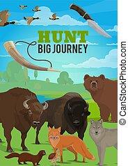 ハンター, 季節, 旅行, 野生, 探求, 大きい, 動物