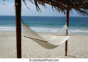 ハンモック, 浜, 勧誘