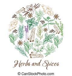 ハーブ, スケッチ, スパイス, 自然, 調味料