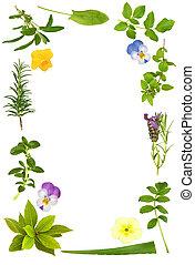 ハーブ, フレーム, 花, 葉