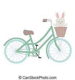 バスケット, かわいい, わずかしか, 自転車, うさぎ