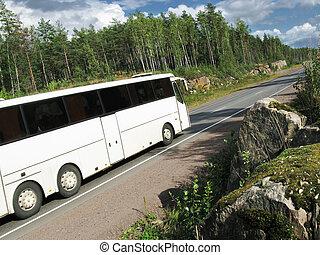 バス, 白