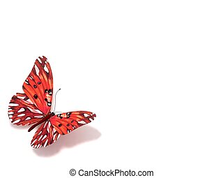 バックグラウンド。, 白, 隔離された, butterfly.