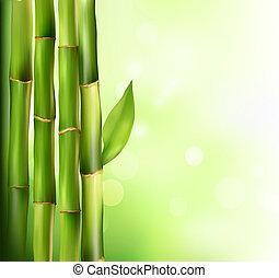バックグラウンド。, 竹, ベクトル, illustration.