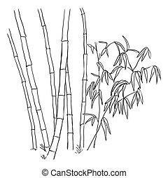 バックグラウンド。, 竹, 白, ブランチ, 隔離された