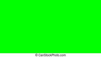 バックグラウンド。, video., フィート数, screen., 株, スクリーン, 緑