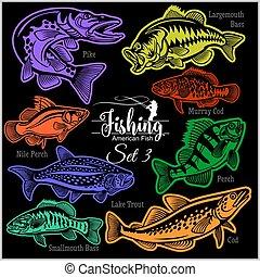 バッジ, -, ベクトル, デザイン, アメリカ人, fish, 隔離された, black., 3, セット, tシャツ, logo., 創造的