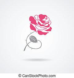 バラ, シンボル, 隔離された, 白, 背景