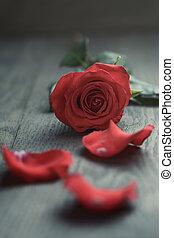 バラ, 木, テーブル, 赤, 花弁
