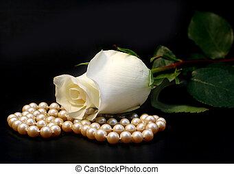 バラ, 白, 真珠